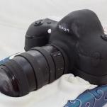Real Size Nikon Replica Cake